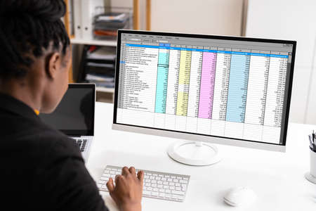 African American Auditor Using Electronic Spreadsheet On Computer