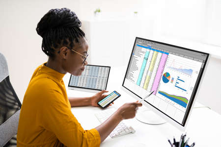 African Business Data Analyst Woman Using Computer