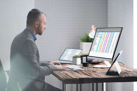 Analyst Employee Working With Spreadsheet On Computer 免版税图像