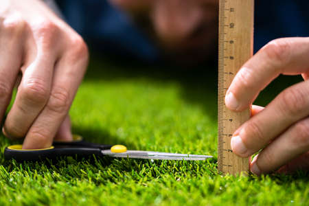 Compulsive Obsessive Disorder. Perfectionist Measuring Garden Grass Banque d'images