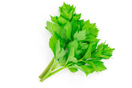A bunch of celery sprigs close-up isolated on a white background Stock fotó