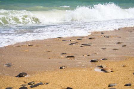 Golden sand beach at the sea. Rocks, waves. 2 photo