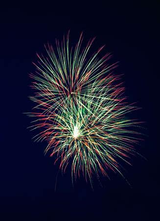 Fireworks on Independence Day. Dark sky. 4 photo