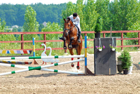 equestrian sports competition