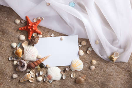 Memories of holidays by the sea  Background with blank card and shells  photo
