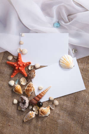 Memories of holidays by the sea  Background with blank cards and shells  photo