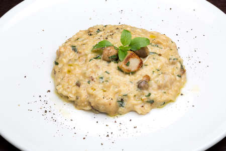 risotto on a large plate