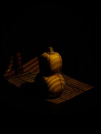 conceptual photo of a pumpkin in a dramatic louver light
