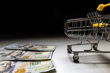 Ready to shop - empty grocery cart with dollar bills next to it. Copy space.