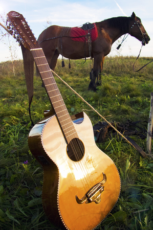 Guitar and horse in the field. A Gypsy camp. 스톡 콘텐츠