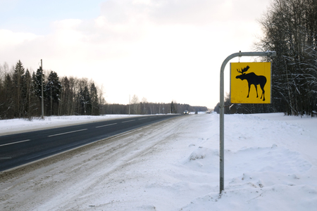 Road sign. Moose are wild animals.Warning Stock Photo