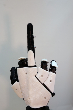 The robot arm with the middle finger up