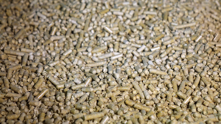 Biomass pellets-wood pellets close-up .Biofuel. Used as a cat toilet.