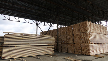 Plant for the production of wood boards. Pilorama. The concept of production, manufacturing and woodworking. Imagens