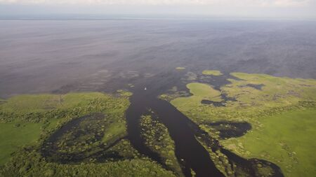 Delta river and pine forests from a birds eye view Banco de Imagens