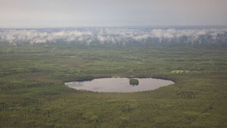 Delta river and pine forests from a birds eye view Stock fotó