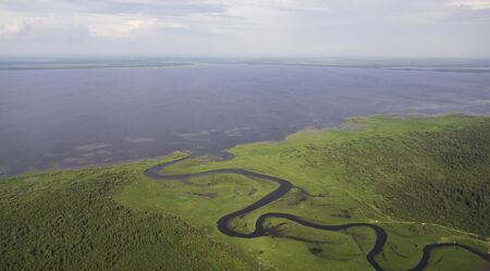 Delta river and pine forests from a birds eye view 写真素材