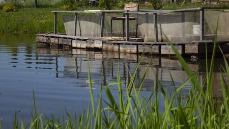 Fish farm in the pond. Aquaculture in the open air Stockfoto - 149417923