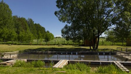 Fish farm in the pond. Aquaculture in the open air. Stockfoto - 149851325