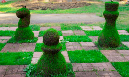 Chess pieces made from grass. Image of a street chess piece Archivio Fotografico - 151286749