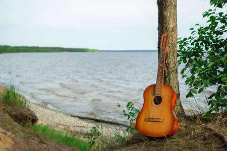 The guitar is leaning against a tree, against the background of the lake. Stockfoto