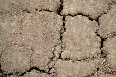 Waterless dry dead land with cracks . Post-apocalyptic Earth after an environmental disaster.