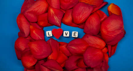 The word love on the background of rose petals . Valentines Day. Background concept of love and beauty Zdjęcie Seryjne