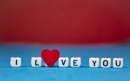 I love you on a colored background . Valentines Day. The concept of love and beauty