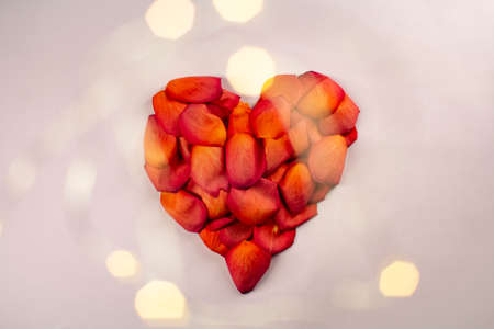 Heart of red rose petals on a pink background. Zdjęcie Seryjne - 161951485