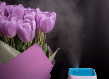 White humidifier with spring flowers on a black background. Stok Fotoğraf