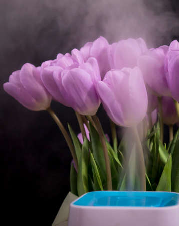 A humidifier with spring flowers on a black background.