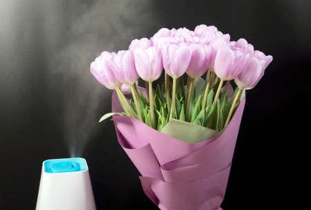 White humidifier with spring flowers on a black background. Zdjęcie Seryjne
