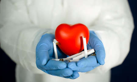 The heart and the cigarettes are in the doctors hands. The concept of cardiology and healthcare. Zdjęcie Seryjne