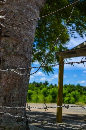 dominican: Travel in Dominican Republic. barbed wire fence