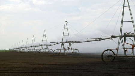 Sprinkler irrigation system in field 스톡 콘텐츠