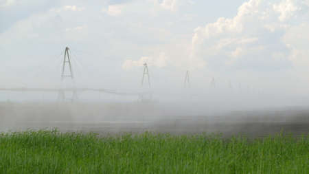a fog by irrigation system and a green grass