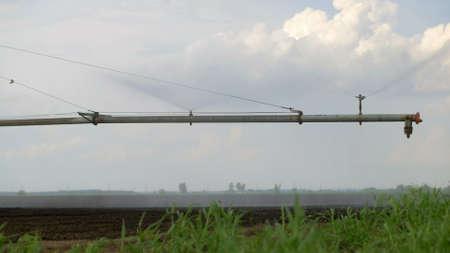 Sprinkler irrigation system in field close-up