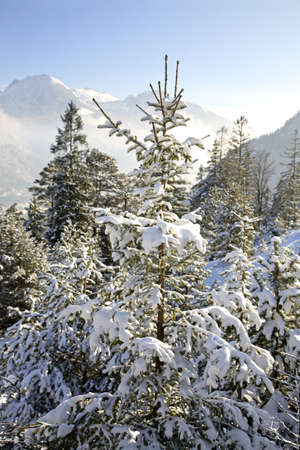 austria: Tyrol. Austria
