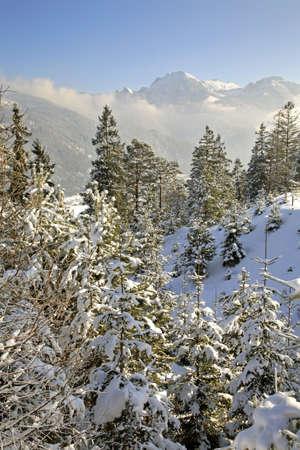 paysage: Tyrol. Austria