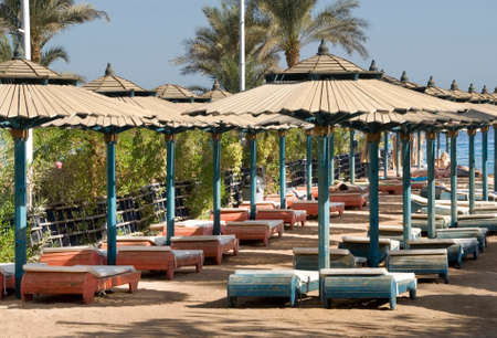 seaboard: Beach in Sharm el-Sheikh. Egypt