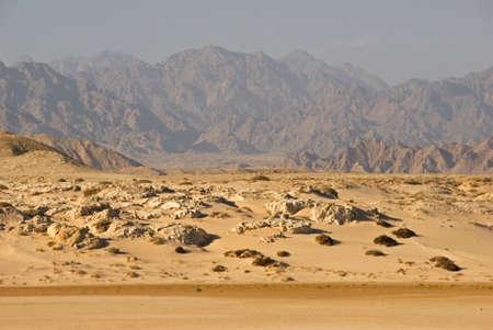 paysage: Ras Muhammad National Park. Egypt
