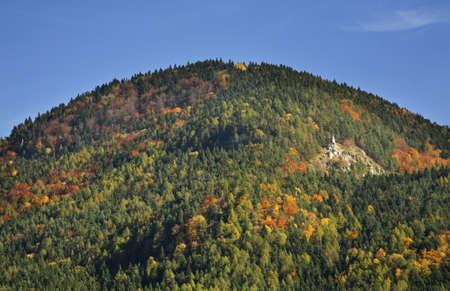 paysage: Forest near Ruzomberok. Slovakia