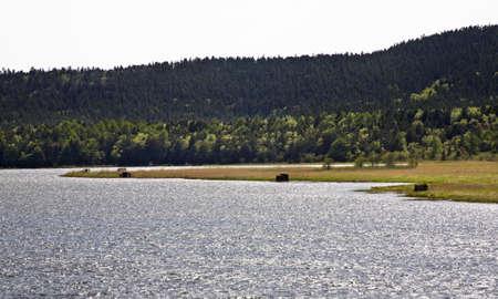 sakhalin: Tunaycha lake .Okhotsk. Sakhalin. Far East. Russia