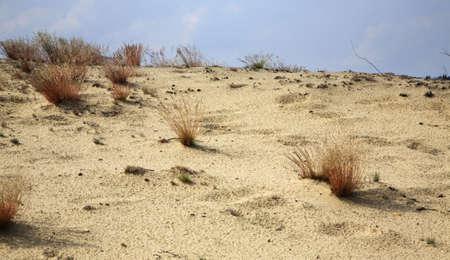 paysage: Bledow Desert. Poland Stock Photo