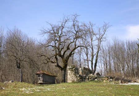 ruined: Ruined building in Licko Petrovo Selo. Croatia
