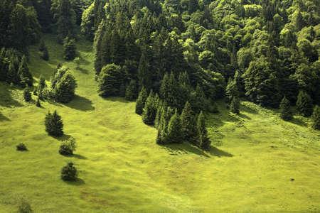 paysage: Landscape in canton of Obwalden. Switzerland