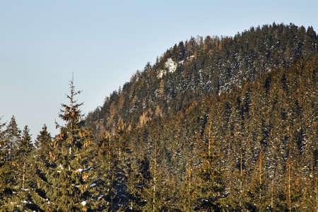 tatras: Low Tatras in Jasna. Slovakia