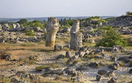 paysage: Pobiti Kamani Stone forest near Varna. Bulgaria Stock Photo