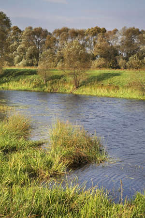 nerl river: Nerl river near Bogolyubovo. Vladimir oblast. Russia