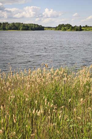 belarus: Serdovo lake. Belarus
